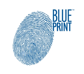 Media Library - Blueprint Thumb  Print