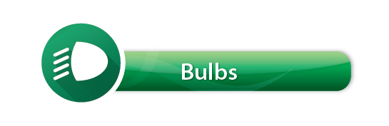 Media Library - Winter Button Bulbs